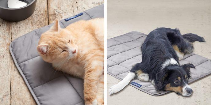 Wellness tæppe til dyrene fra Magnethjerte