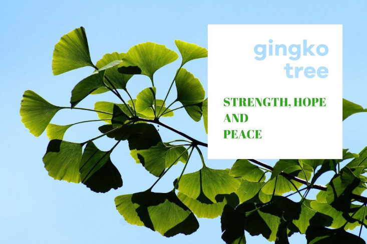 ginko-bladsmykker-fra-magnethjerte-webshop