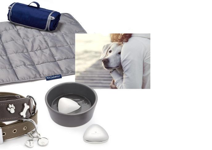 magneter til dine dyr fra magnethjerte
